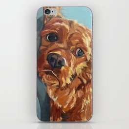 Newton the Lounging Cocker Spaniel iPhone Skin