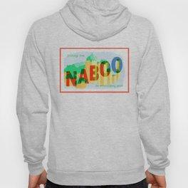 Greetings from Naboo Hoody