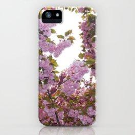Sakura Matsuri iPhone Case