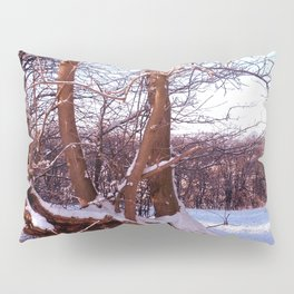 Virgin Territory Pillow Sham