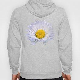 Colourful daisy flower Hoody