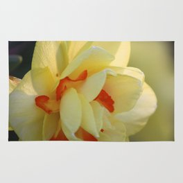 Daffy For Yellows Rug