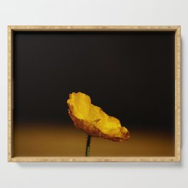 Lonely yellow poppy flower - Minimalist nature photography Serving Tray