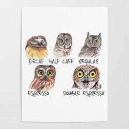 Owl Caffeine Meter -  funny owl coffee Poster