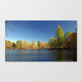 Vibrant Display Canvas Print