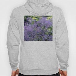 Longwood Gardens - Spring Series 209 Hoody