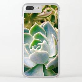 #143Photo #157 #DessertRose #Plants Clear iPhone Case