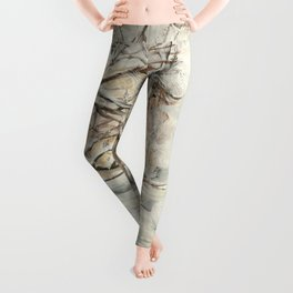 Walk in Winter Park Leggings
