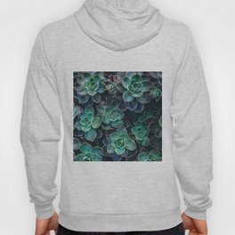 Succulent Blue Green Plants Hoody
