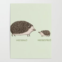 Hedgehog Hedgesprog Poster