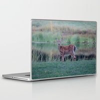 fawn Laptop & iPad Skins featuring Fawn by Linda Wooderson