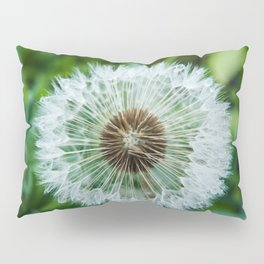 Dewy Dandelion Seeds Photography Print Pillow Sham
