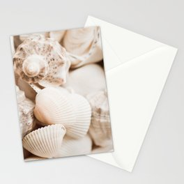 Sea snails and molluscs empty shells Stationery Cards