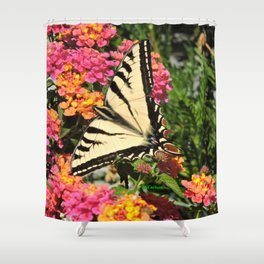 Swallowtail on Lantana Shower Curtain