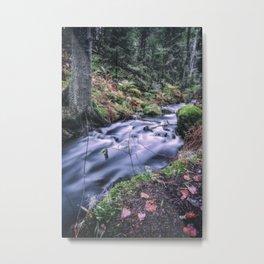The Magic Ravine Metal Print