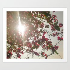 Bright Morning Art Print