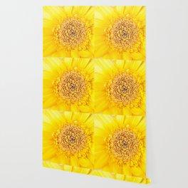 Sunny Summer Love - Yellow Gerbera #1 #decor #art #society6 Wallpaper