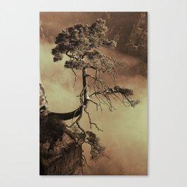 Mystic lonely tree Canvas Print