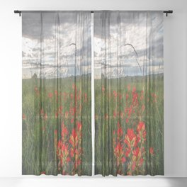 Brighten the Day - Indian Paintbrush Wildflowers in Eastern Oklahoma Sheer Curtain