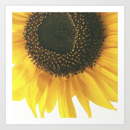 FLOWER 045 Art Print