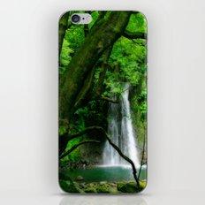 Waterfall in Azores islands iPhone & iPod Skin