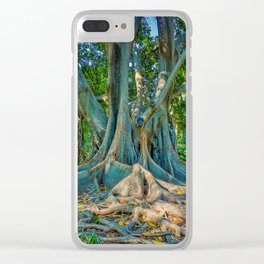 Seville Tree (No Oranges) Clear iPhone Case