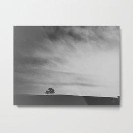 278 | austin Metal Print