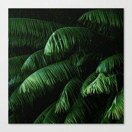 Lush green palms Canvas Print