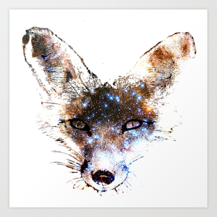 Stars in a Fox Art Print