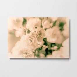 Romance and Ruffles beautiful flowers Metal Print