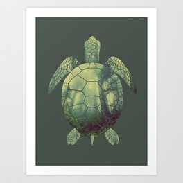 forest turtle Art Print