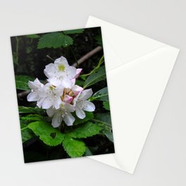 Rhododendron after rain Stationery Cards