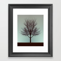 Branching into Symmetry Framed Art Print