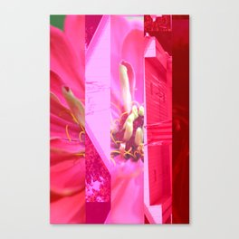 crash_ 22 Canvas Print