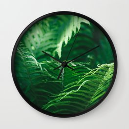 Macro photography of a fern in a tropical forest. Nature background. Wall Clock