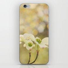 Everyday Magic iPhone & iPod Skin