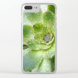 Succulent Rain Drops Clear iPhone Case