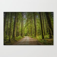 Dirt Road through a Rain Forest on Vancouver Island in British Columbia Canada No.1178 A Fine Art Wi Canvas Print