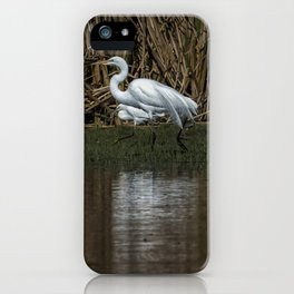 Great and Snowy Egrets, No. 3 iPhone Case