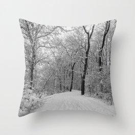 down the snowy path Throw Pillow