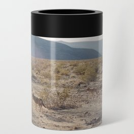 Panamint Valley Coyotes Can Cooler
