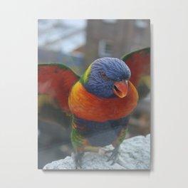 Wings DPG150701 Metal Print