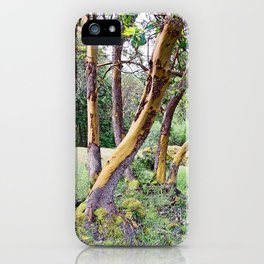 MAGIC MADRONA FOREST iPhone Case