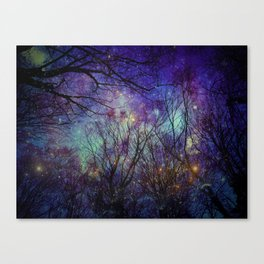starry night in the bulgarian forest Canvas Print