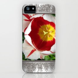 Triumph Tulip named Carnaval de Rio iPhone Case