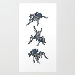 Tarantula Art Print