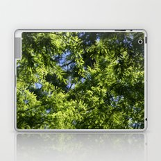 In the shade of the cypress Laptop & iPad Skin