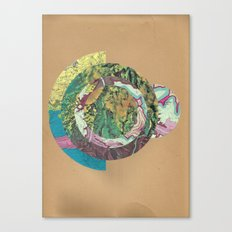 Topography Canvas Print