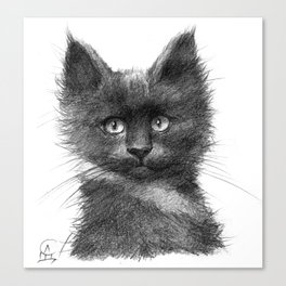 Black Kitten SK135 Canvas Print