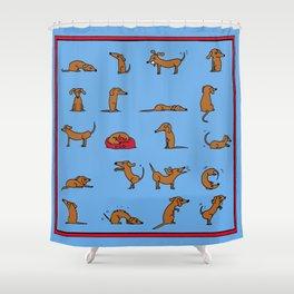Sausage the Dog: Blue Print Shower Curtain